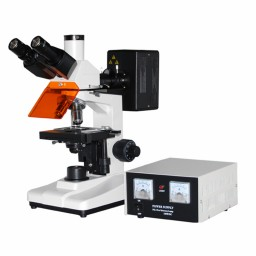 荧光显微镜DYF-200