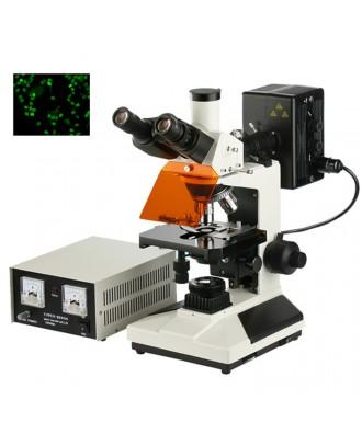 落射荧光显微镜DYF-300